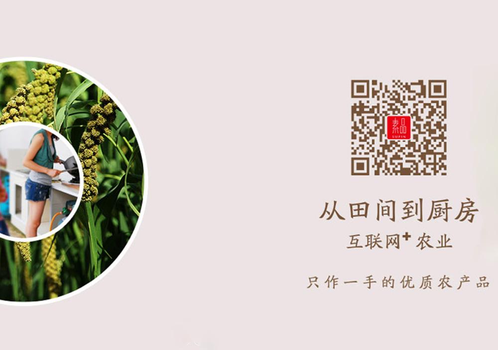 邢台市壹佰度信息技术有限公司