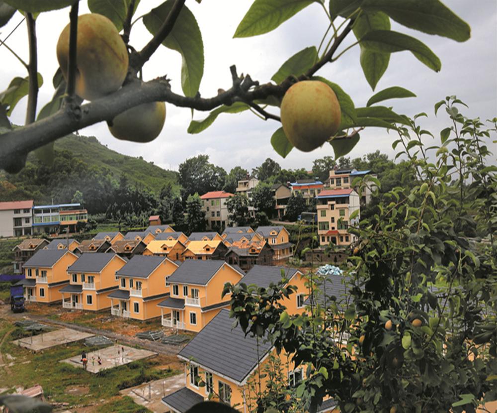 广安华蓥市建电商物流体系助力脱贫攻坚